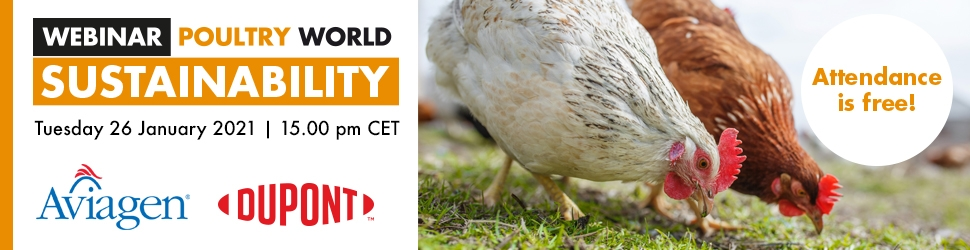 Webinar-Sustainability-970x250-zonder
